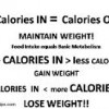Top 4 steps to find out how many calories needed to lose weight