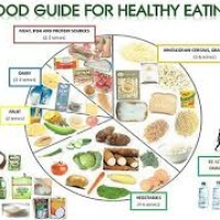 Healthy eating plan determines your weight loss
